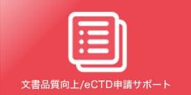 文書品質向上/eCTD申請サポート